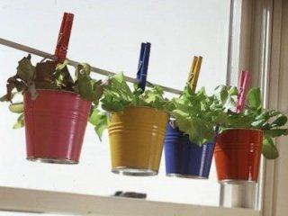 نحوه جمع آوری و خشک کردن گیاهان دارویی در منزل.
