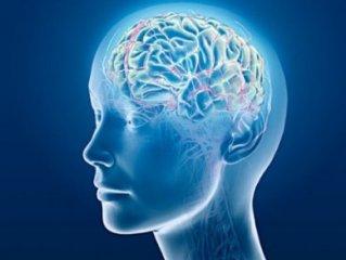 10 ترفند علمی برای تقویت حافظه.