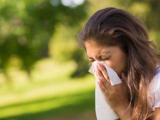 درمان حساسیت فصلی با روشهای خانگی و گیاهی.