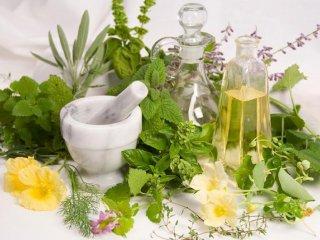گیاهان دارویی برای رشد موی سر.