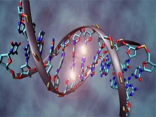 تاریخ درون ما؛ ژنوم انسان و کاربرد آن در کشف حقایق گذشته و آینده