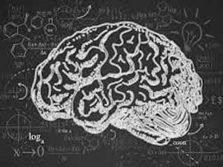 مغز خود را برای پیشرفت تربیت کنید