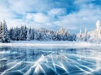 1954 ویلیام هامیلتون، ژوزف بومباردیه: حرکت سریع تر روی برف و آب