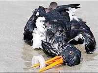 پلاستیک تنها آلوده نمی کند؛ اقلیم را بدتر می کند
