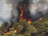 چند دلیل برای وقوع آتش سوزی در طبیعت